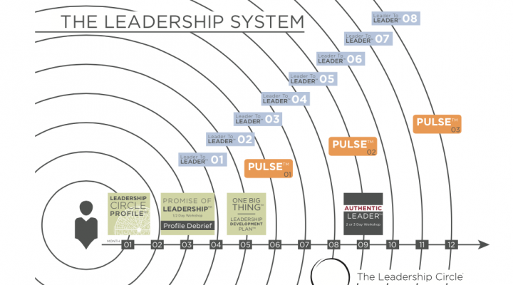 The Leadership System™